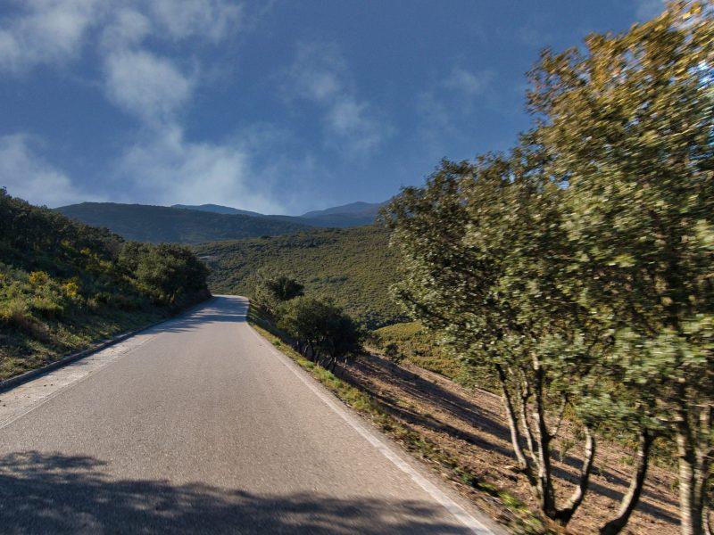 Route du Col de Banyuls