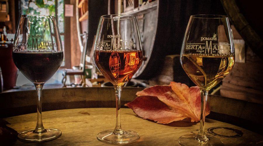 Dégustation vente vin Banyuls
