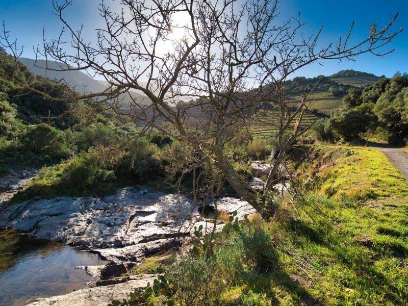 Rivière Catalane