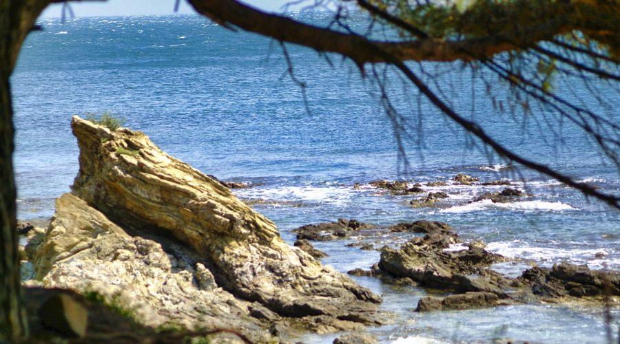 Plage du Sana Banyuls-sur-Mer
