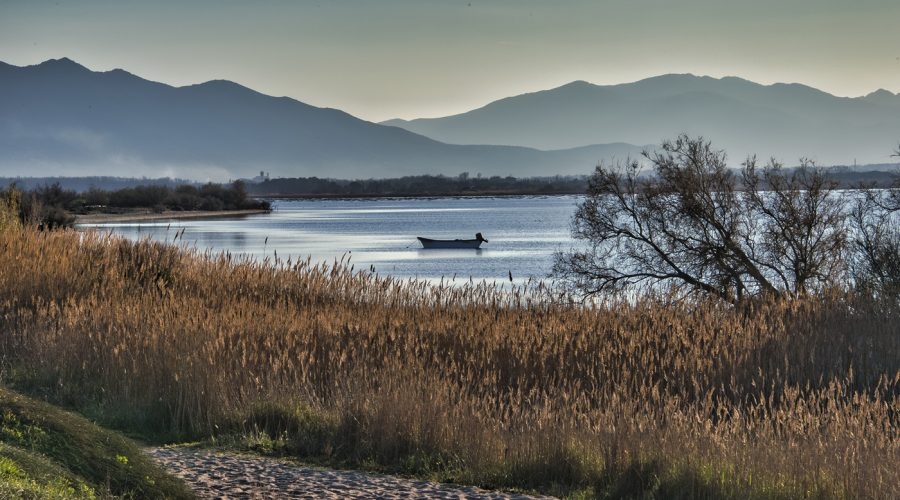 Barque de pêche étang de Canet en Roussillon