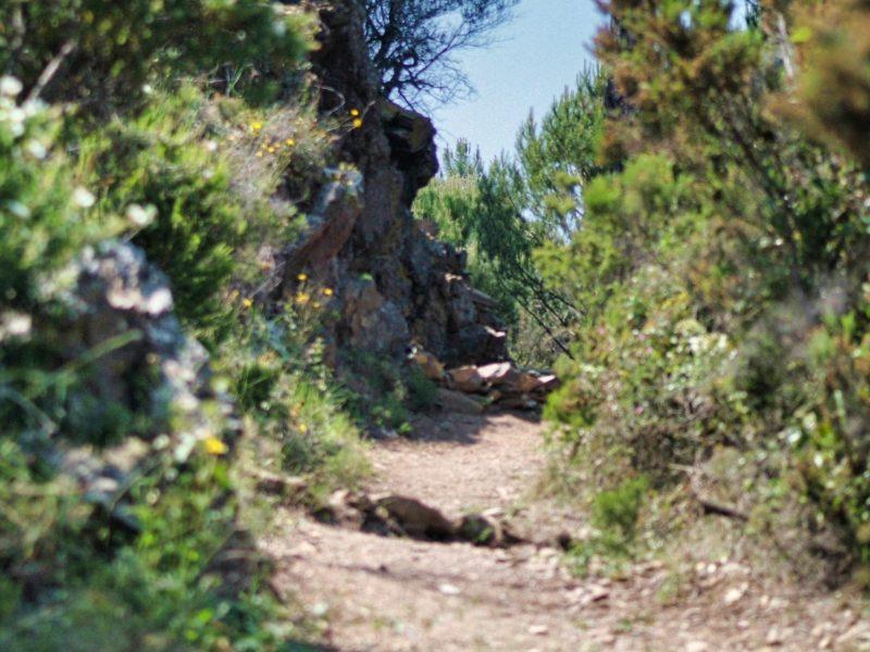 Sentier pédestre de Banyuls sur Mer