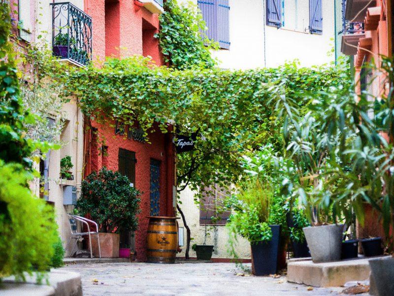 Bar Tapas à Collioure