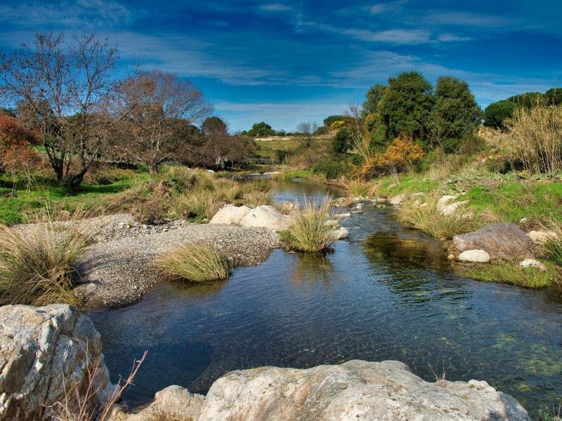 Rivière en arrière Pays Catalan